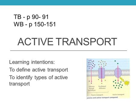 ACTIVE TRANSPORT Learning intentions: To define active transport To identify types of active transport TB - p 90- 91 WB - p 150-151.