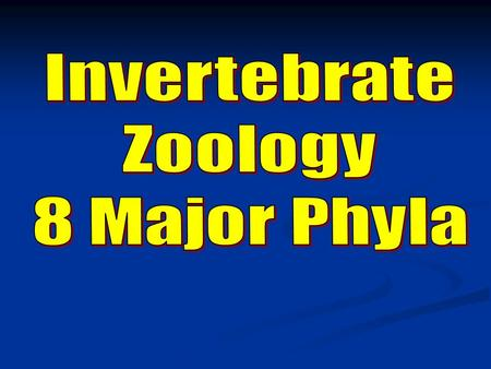 Invertebrate Zoology 8 Major Phyla.