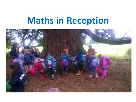 Maths in Reception. Maths in the EYFS EYFS is the statutory curriculum for young children In EYFS, Maths is divided into two sections I.Number II.Shape,