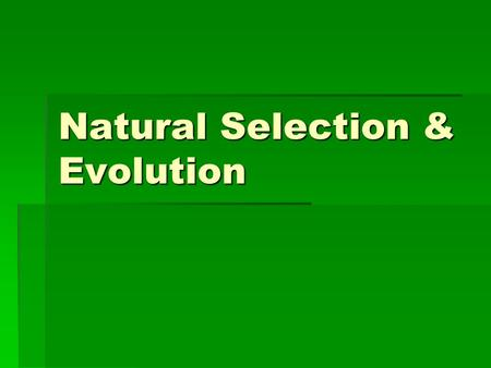 Natural Selection & Evolution. I. Natural Selection & Charles Darwin  Due to earth's long history; life is thought to have evolved over time  Charles.