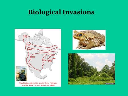 Biological Invasions. Definitions from the National Invasive Species Council: Native species = a species that, other than as a result of an introduction,