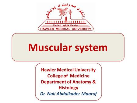 Muscular system Hawler Medical University College of Medicine Department of Anatomy & Histology Dr. Nali Abdulkader Maaruf.