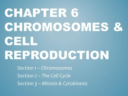CHAPTER 6 CHROMOSOMES & CELL REPRODUCTION Section 1 – Chromosomes Section 2 – The Cell Cycle Section 3 – Mitosis & Cytokinesis.