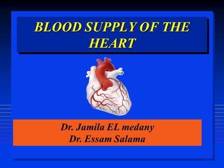 BLOOD SUPPLY OF THE HEART Dr. Jamila EL medany Dr. Essam Salama.