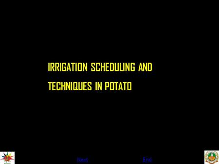 NextEnd IRRIGATION SCHEDULING AND TECHNIQUES IN POTATO.