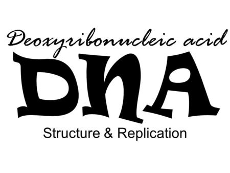 DNA Structure & Replication Deoxyribonucleic acid.