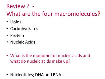 Review ? - What are the four macromolecules? Lipids Carbohydrates Protein Nucleic Acids What is the monomer of nucleic acids and what do nucleic acids.