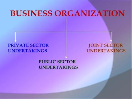 BUSINESS ORGANIZATION PRIVATE SECTOR UNDERTAKINGS PUBLIC SECTOR UNDERTAKINGS JOINT SECTOR UNDERTAKINGS.