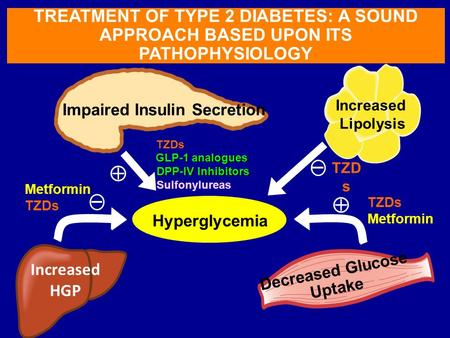 Hyperglycemia TREATMENT OF TYPE 2 DIABETES: A SOUND APPROACH BASED UPON ITS PATHOPHYSIOLOGY Impaired Insulin Secretion Hyperglycemia Decreased Glucose.