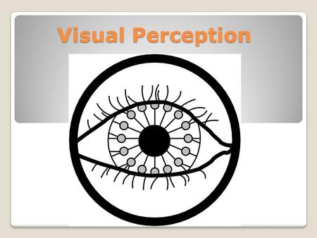 Visual Perception. What is Visual Perception? Visual perception are rules we apply to visual information to assist our organisation and interpretation.