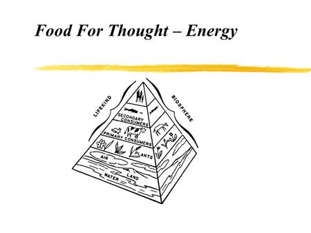 Food For Thought – Energy. Energy Capacity to perform work Kinetic energy = motion Potential energy = stored energy.