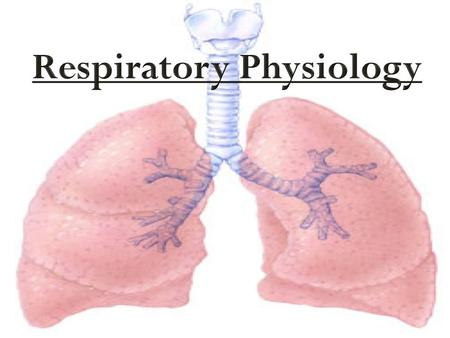 "Pulmonary Ventilation  A.K.A. ""Breathing""  Consists of two phases:  Inspiration: period of time when air flows into the lungs  Expiration: period."
