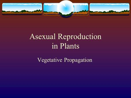 Asexual Reproduction in Plants
