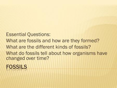 Essential Questions: What are fossils and how are they formed? What are the different kinds of fossils? What do fossils tell about how organisms have changed.