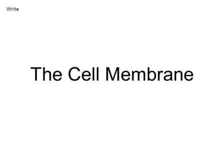 The Cell Membrane Write. Cell Membrane The membrane of the cell has many different names. You may hear it called: The phospholipid bilayer The semi-permeable.