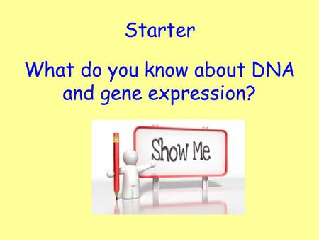 Starter What do you know about DNA and gene expression?