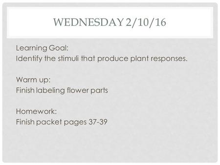 WEDNESDAY 2/10/16 Learning Goal: Identify the stimuli that produce plant responses. Warm up: Finish labeling flower parts Homework: Finish packet pages.