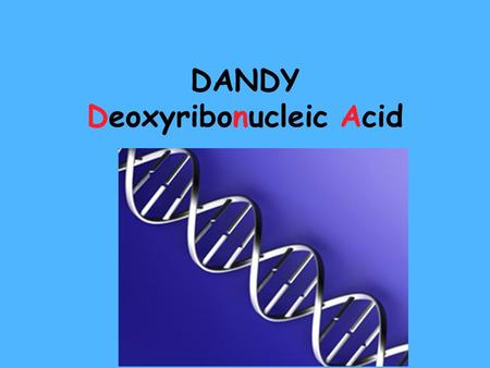 DANDY Deoxyribonucleic Acid ALL CELLS HAVE DNA… Cells are the basic unit of structure and function of all living things. –Prokaryotes (bacteria) –Eukaryotes.