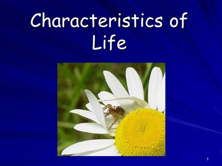 1 Characteristics of Life. 2 What is Biology? Biology is the study of all living things Living things are called organisms Living things are called organisms.