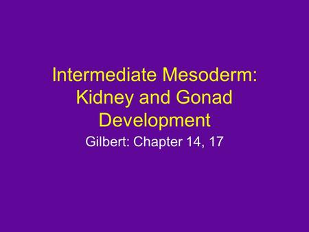 Intermediate Mesoderm: Kidney and Gonad Development Gilbert: Chapter 14, 17.