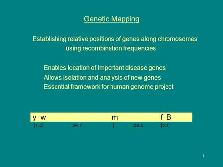 1 Genetic Mapping Establishing relative positions of genes along chromosomes using recombination frequencies Enables location of important disease genes.
