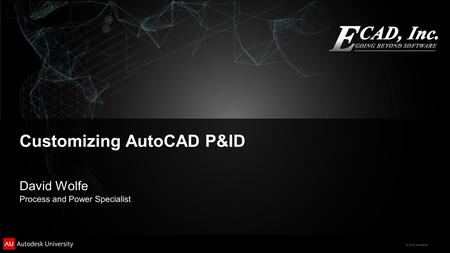 © 2012 Autodesk Customizing AutoCAD P&ID David Wolfe Process and Power Specialist.