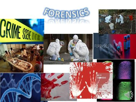 STOP! The FIRST critical step when dealing with a crime scene is: TO SECURE THE CRIME SCENE ;so none of the evidence is jeopardized.