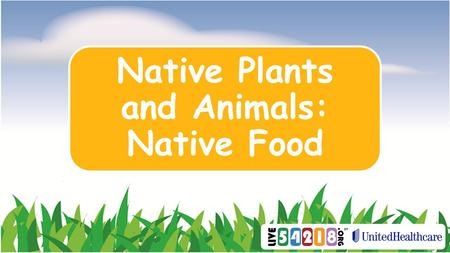 Native Plants and Animals: Native Food. What foods are native to Wisconsin?