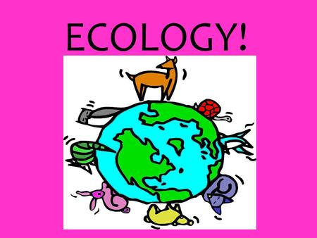 ECOLOGY!. What is Ecology? - study of the interactions among organisms and between organisms and their environment. Some Vocabulary Review!