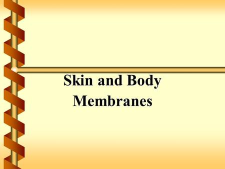 Skin and Body Membranes.  Function of body membranes  Line or cover body surfaces  Protect body surfaces  Lubricate body surfaces.