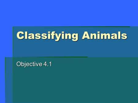 Classifying Animals Objective 4.1. Characteristics of Animals 1.Multi-cellular 2.Require oxygen 3.Consume other organisms for food 4.Able to move at some.