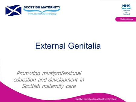 Quality Education for a Healthier Scotland Multidisciplinary Promoting multiprofessional education and development in Scottish maternity care External.