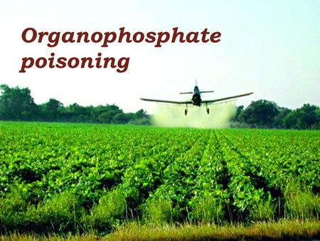 Organophosphate poisoning. Objectives Mode of toxicity Variability of toxicity Toxicokinetic Toxicodynamic Clinical picture Treatment & prevention.