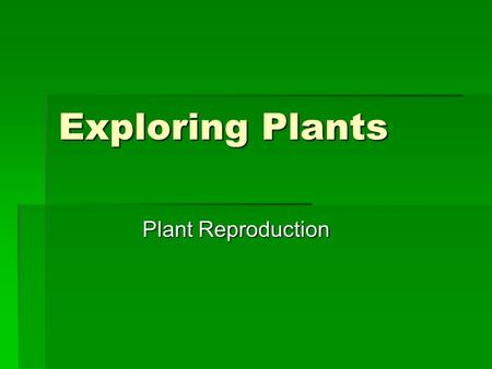 Exploring Plants Plant Reproduction. Reproductive Structure of Seed Plants  Male sex cells  pollen grain – has thick protective wall  Ovule  female.