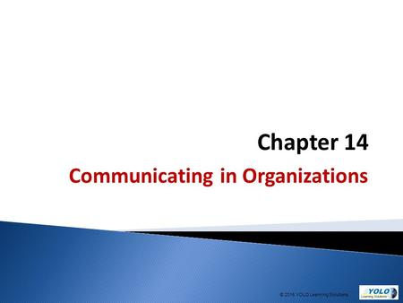 Chapter 14 Communicating in Organizations © 2015 YOLO Learning Solutions.