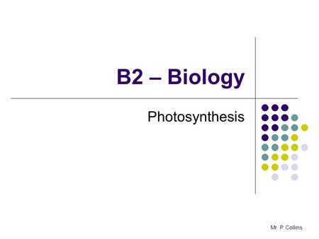 B2 – Biology Photosynthesis Mr. P. Collins. B2.3 Photosynthesis - AIM to interpret data showing how factors affect the rate of photosynthesis and evaluate.