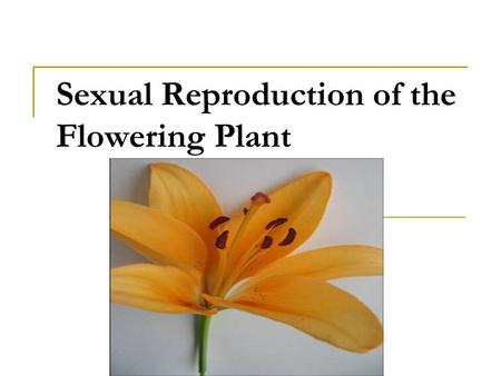 Sexual Reproduction of the Flowering Plant. Structure of the flower.