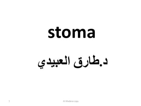 Stoma د. طارق العبيدي Al-Madena copy1. Colostomy: is an artificial opening made in to large bowel in order to divert feces and flatus to the exterior.
