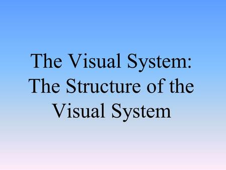 The Visual System: The Structure of the Visual System.