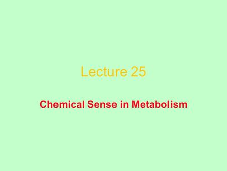 Lecture 25 Chemical Sense in Metabolism. Making and Breaking C–C Bonds Homolytic reactions Heterolytic reactions.