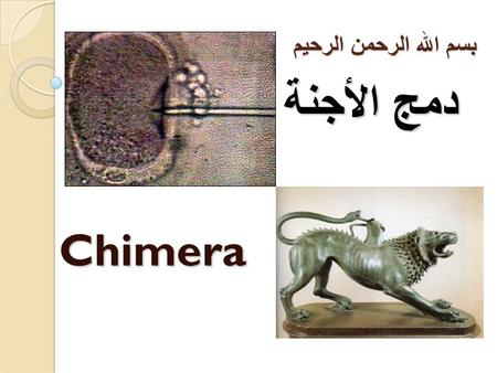 بسم الله الرحمن الرحيم Chimera دمج الأجنة. Introduction The word of Chimera meaning with the Greeks is a fictional animal form his lion's head and body.