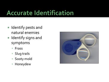  Identify pests and natural enemies  Identify signs and symptoms  Frass  Slug trails  Sooty mold  Honeydew.