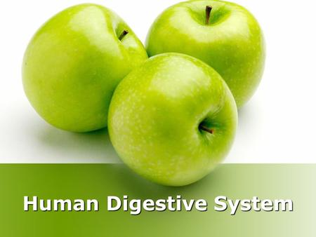 Human Digestive System. All cells need food for growth, energy, and repair. The purpose of the digestive system is to break down the food that we eat.