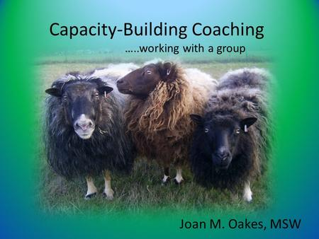 Capacity-Building Coaching …..working with a group Joan M. Oakes, MSW.