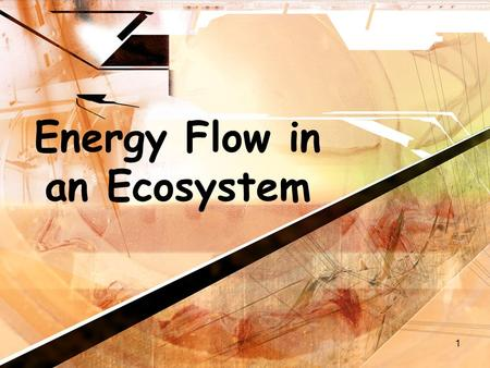 1 Energy Flow in an Ecosystem. 2 Energy Flow Energy in an ecosystem originally comes from the sunEnergy in an ecosystem originally comes from the sun.
