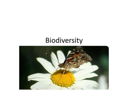 Biodiversity. Biodiversity, which is short for biological diversity, is the term used to describe the whole variety of life on Earth Biodiversity encompasses.