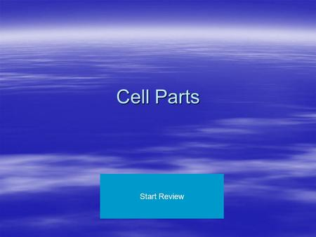 Cell Parts Start Review. Cell Membrane Endoplasmic Reticulum Nucleus Ribosomes Golgi Bodies Mitochondria Lysosomes Nuclear Membrane Vacuole Plant Cell.
