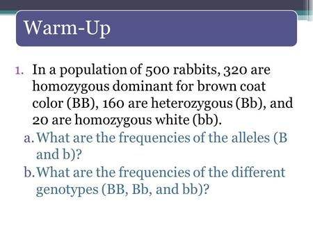 Warm-Up 1.In a population of 500 rabbits, 320 are homozygous dominant for brown coat color (BB), 160 are heterozygous (Bb), and 20 are homozygous white.