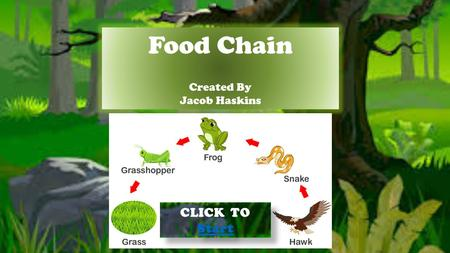 Food Chain Created By Jacob Haskins CLICK TO Start Start CLICK TO Start Start.