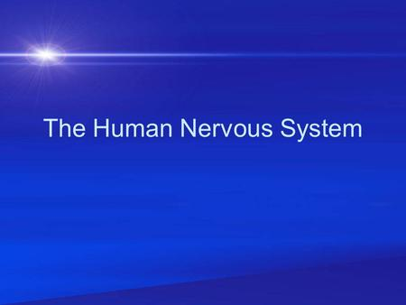 The Human Nervous System. The Nervous System has TWO Major Divisions. The Central Nervous System The Peripheral Nervous System.